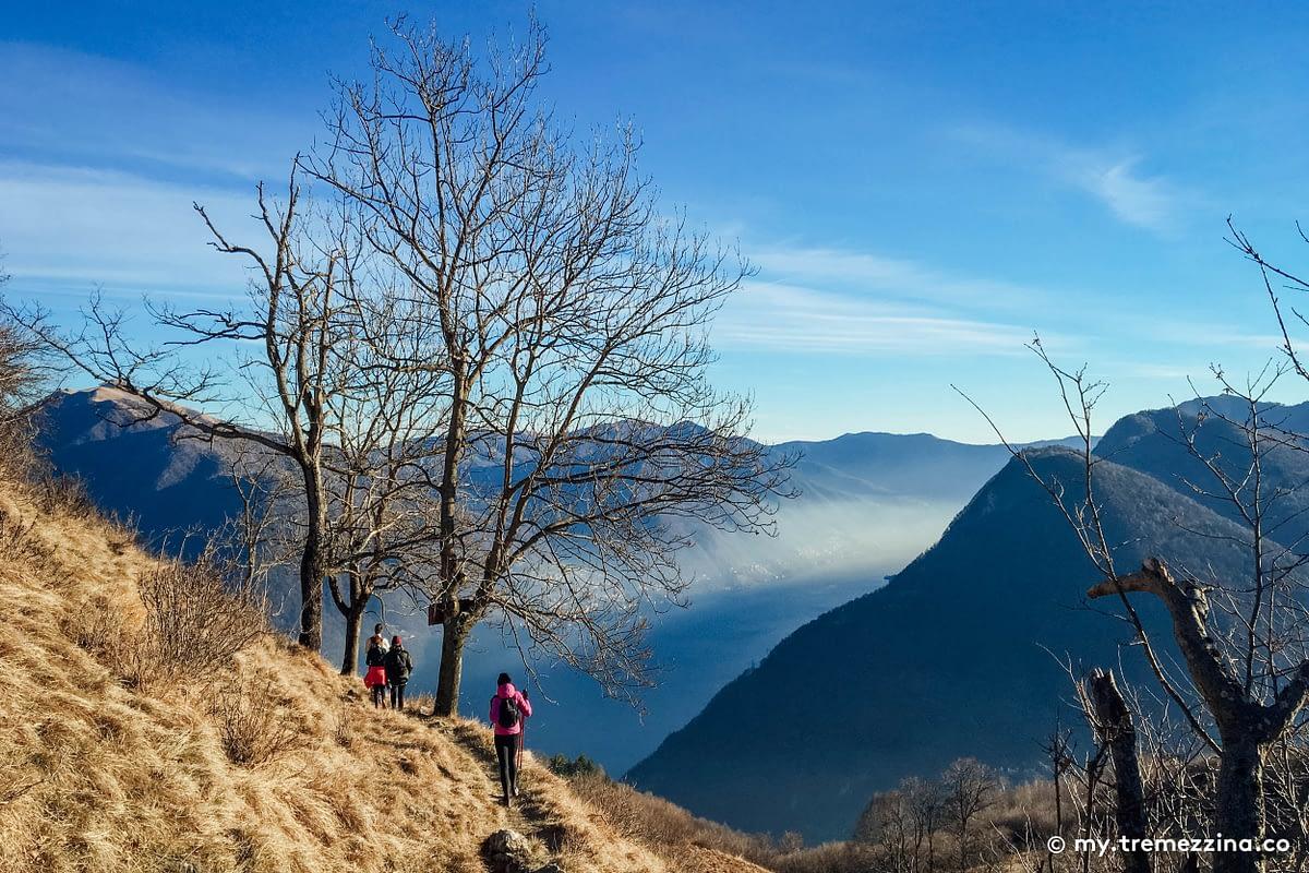 Passeggiata Pigra - Alpe di Blessagno